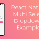 React Native Multi Select DropDown Example
